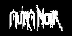 Aura Noir, groupe de Black Thrash Metal norvégien au Courts of Chaos Festival 2017