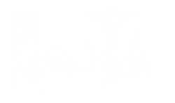 Hexecutor, groupe de Thrash Metal rennaisau Courts of Chaos Festival 2017